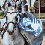Sidesaddle Dressage - Lion d'Angers